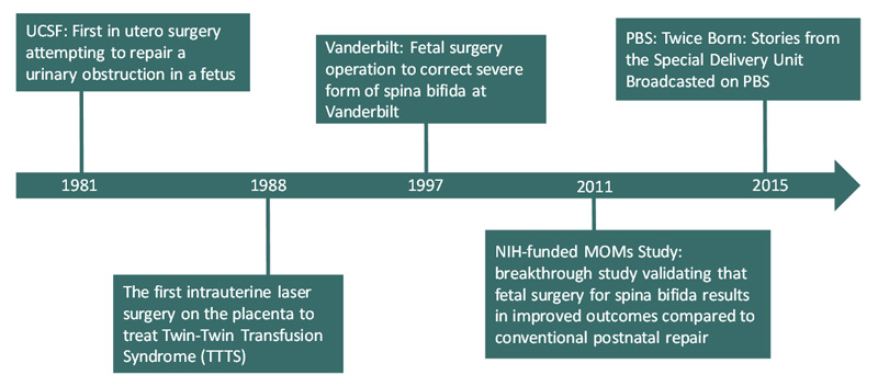 Innovative Care Models in the Advancement of Maternal Fetal